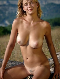 Sexy girl with amazing big boobs and a tattoo on her pubis shows off her assets outdoors.