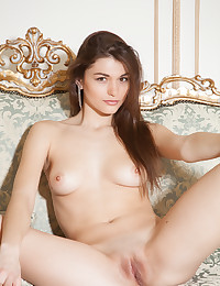 Nude brunette perfection photo #14