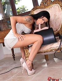 Wild Newcomer Humps The Sybian photo #2